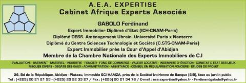 cabinet_afrique_experts_associes